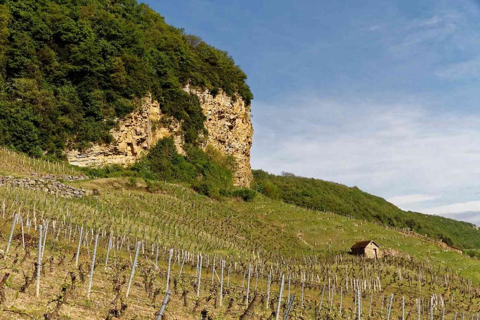 The Jura of Domaine Jean-Luc Mouillard