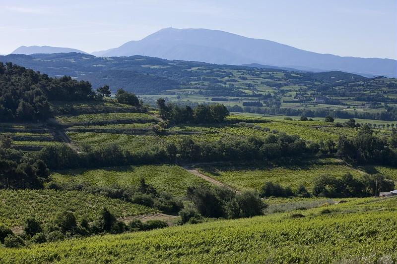 Pierredon_Cotes_du_Rhone_scenery