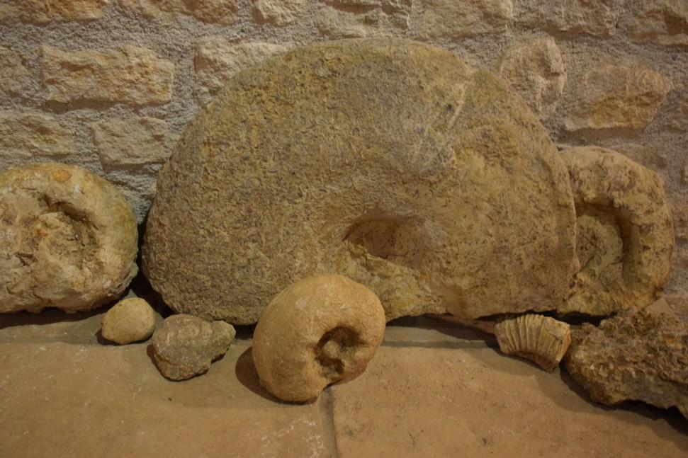 Domaine Matthias and Emile Roblin Les Ammonites