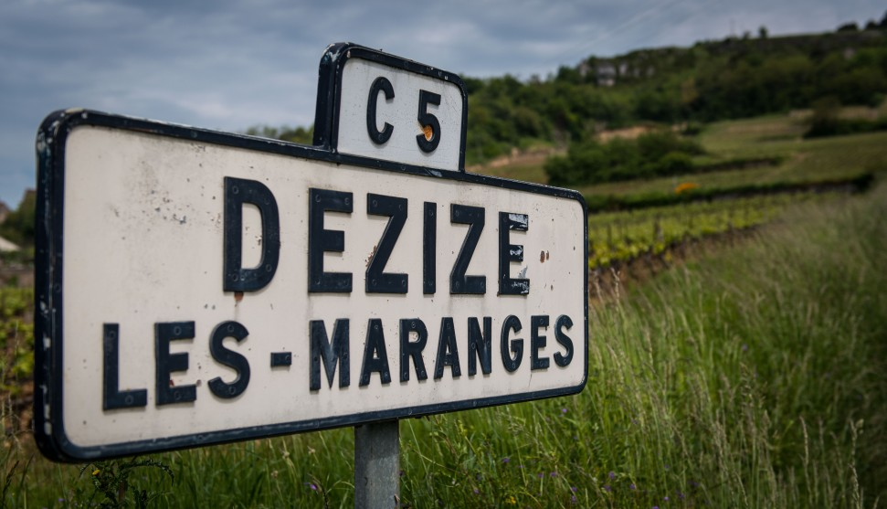 Domaine Bachelet-Monnot sign
