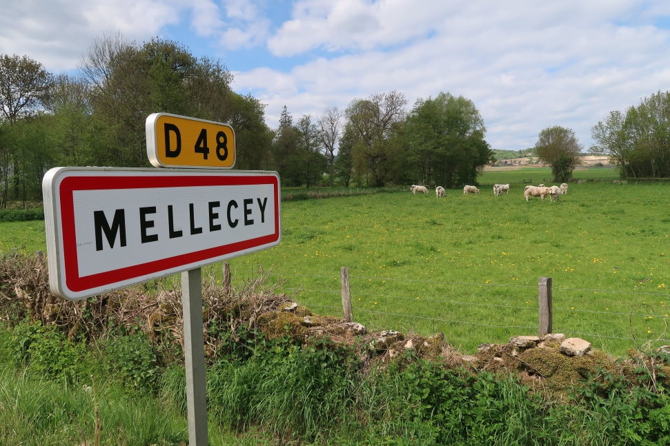 Domaine Meunier countryside