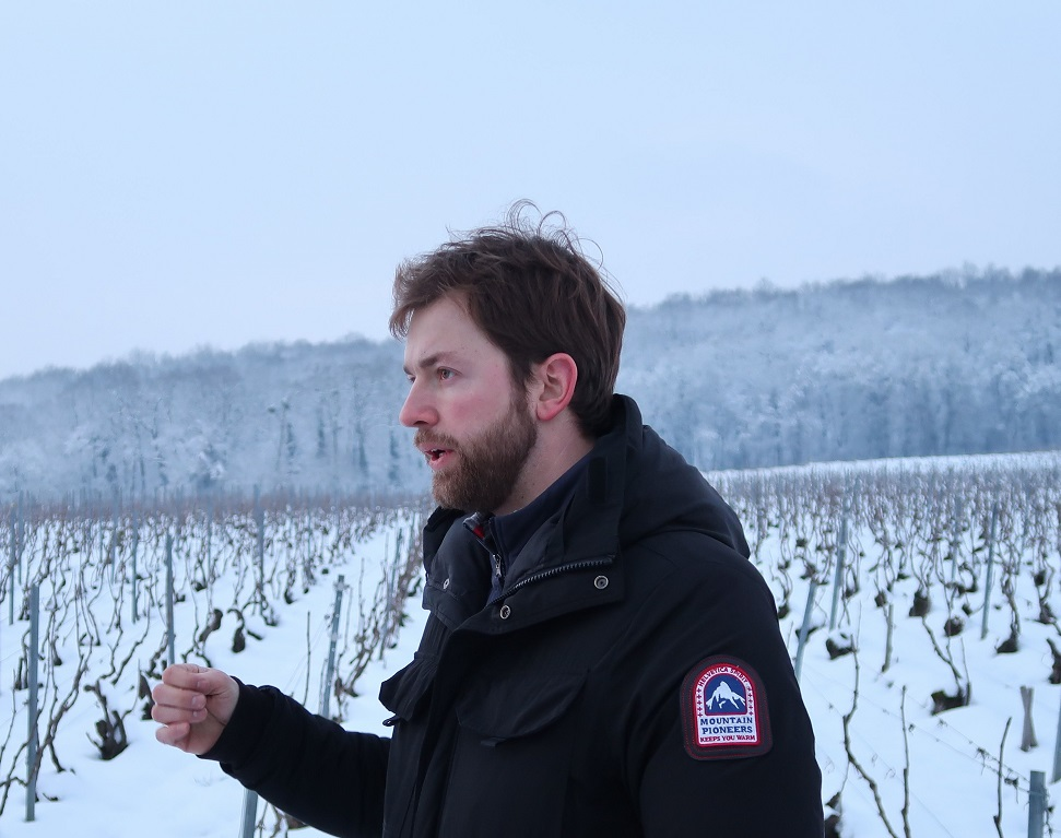 Champagne J-M Sélèque vineyards