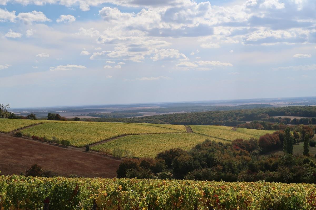 Henry Natter Montigny hillsides
