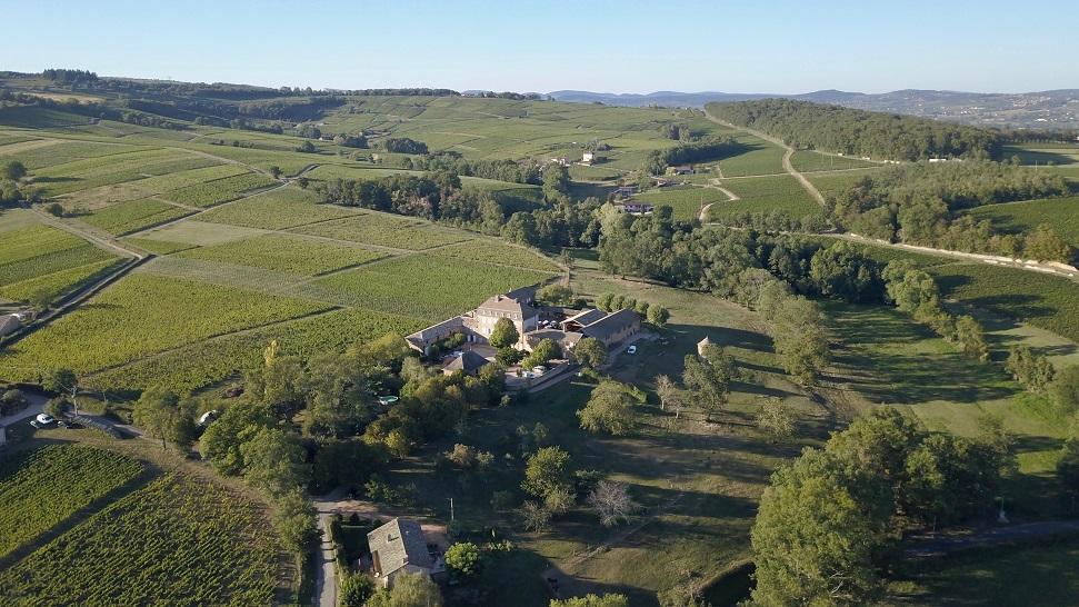 Château de Lavernette vineyards